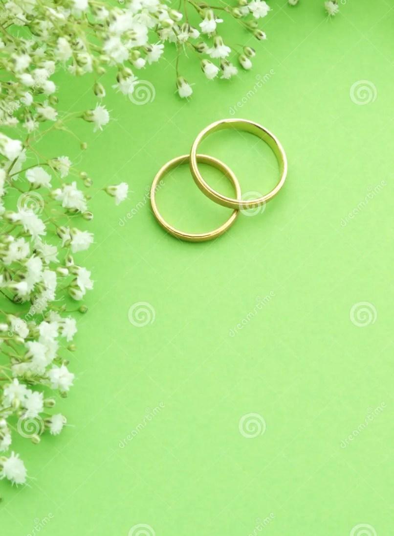 Wedding Invitation Background Designs Green   Inviview.co
