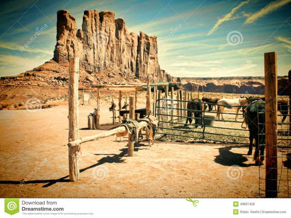 Old Western Corral Horse