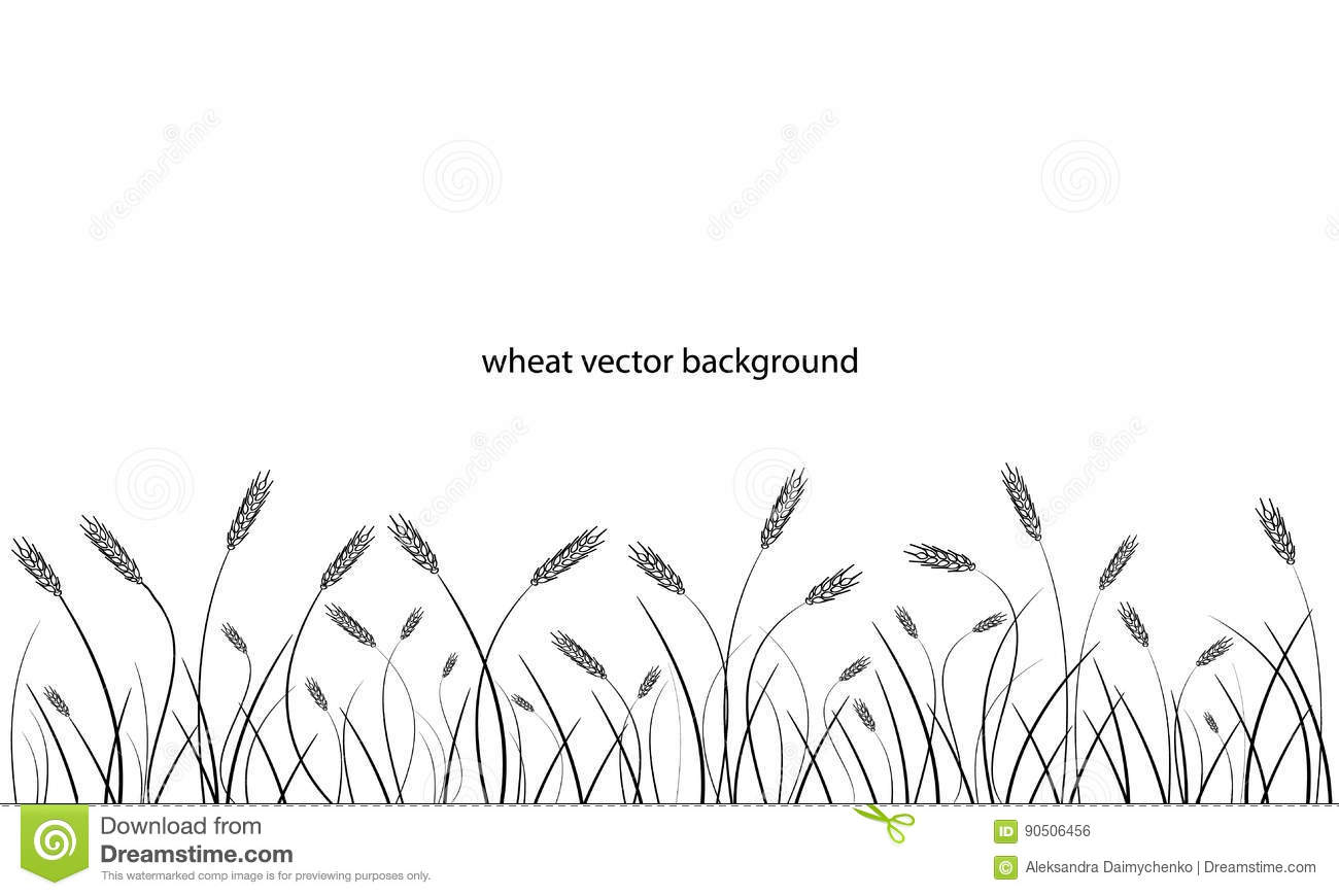 Wheat Field Line Border Isolated On White Stock Vector
