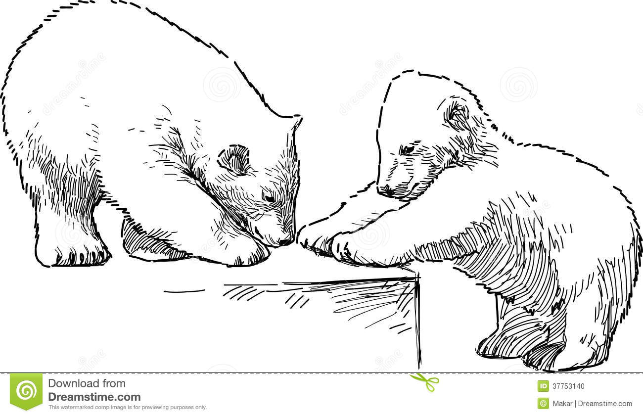 White Bear Cubs Stock Vector Illustration Of Baby Wild