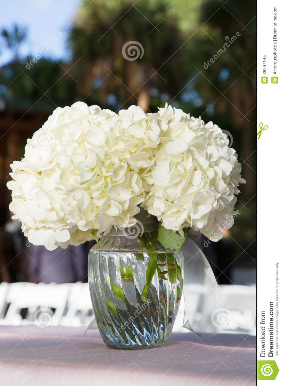 White Flowers In Glass Vase Stock Image  Image of plants