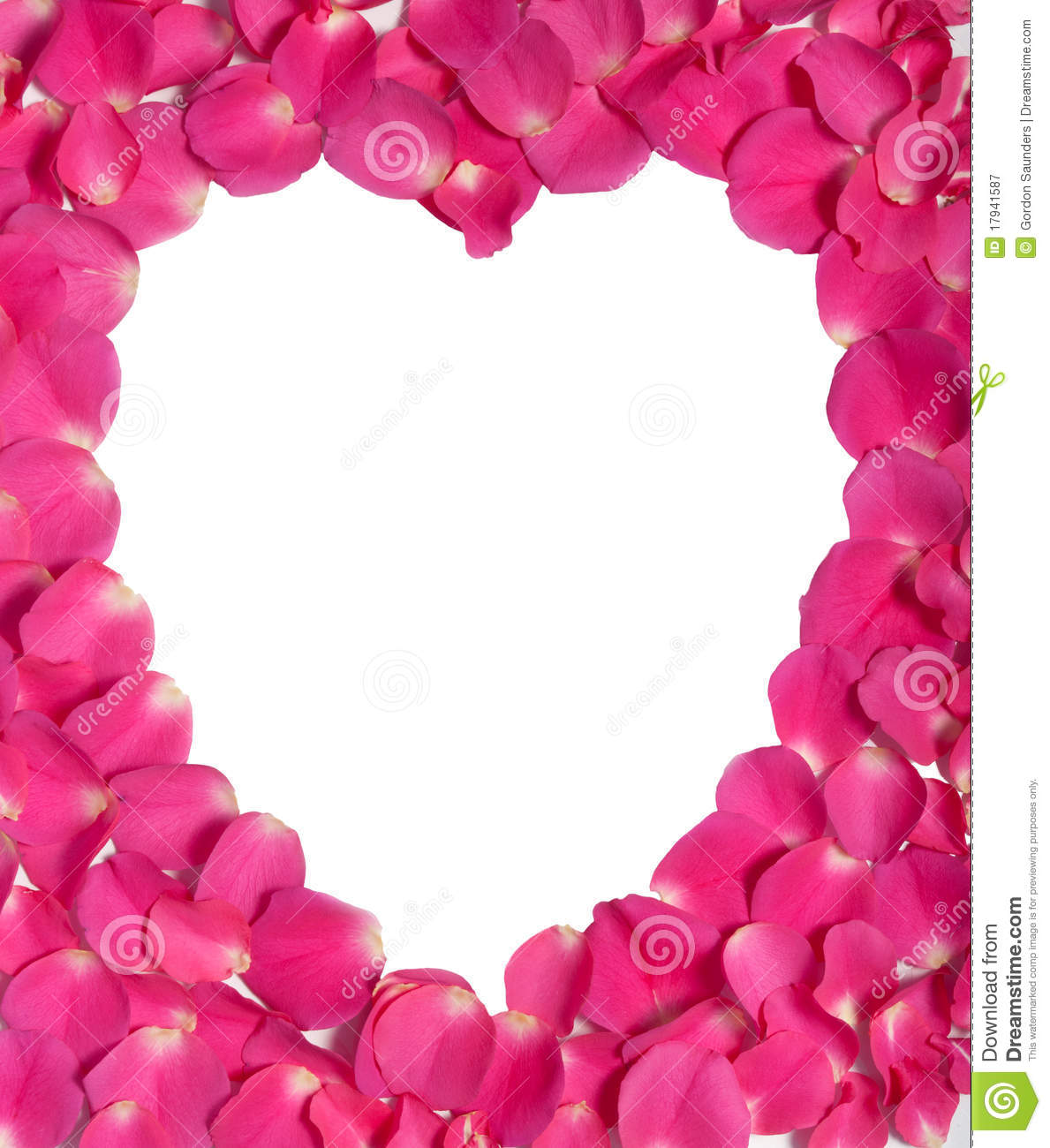 White Heart And Pink Rose Petals Royalty Free Stock