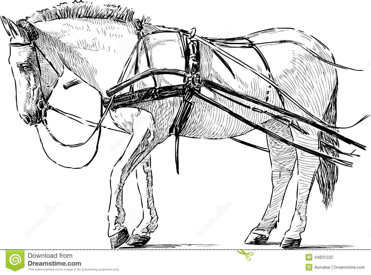 White horse in the harness stock vector. Illustration of