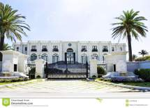 Luxury White Mansion