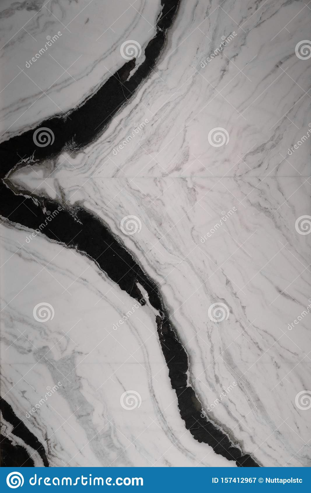 White Marble Seamless : white, marble, seamless, White, Panda, Natural, Marble, Texture, Match, Pattern, Seamless, Stock, Image, Concept,, Granite:, 157412967