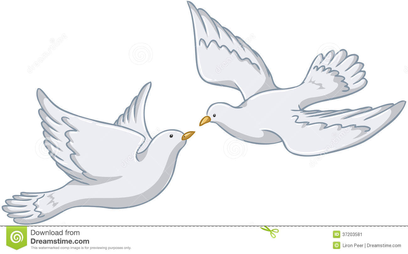 White Pigeons Flying Together Stock Image  Image 37203581