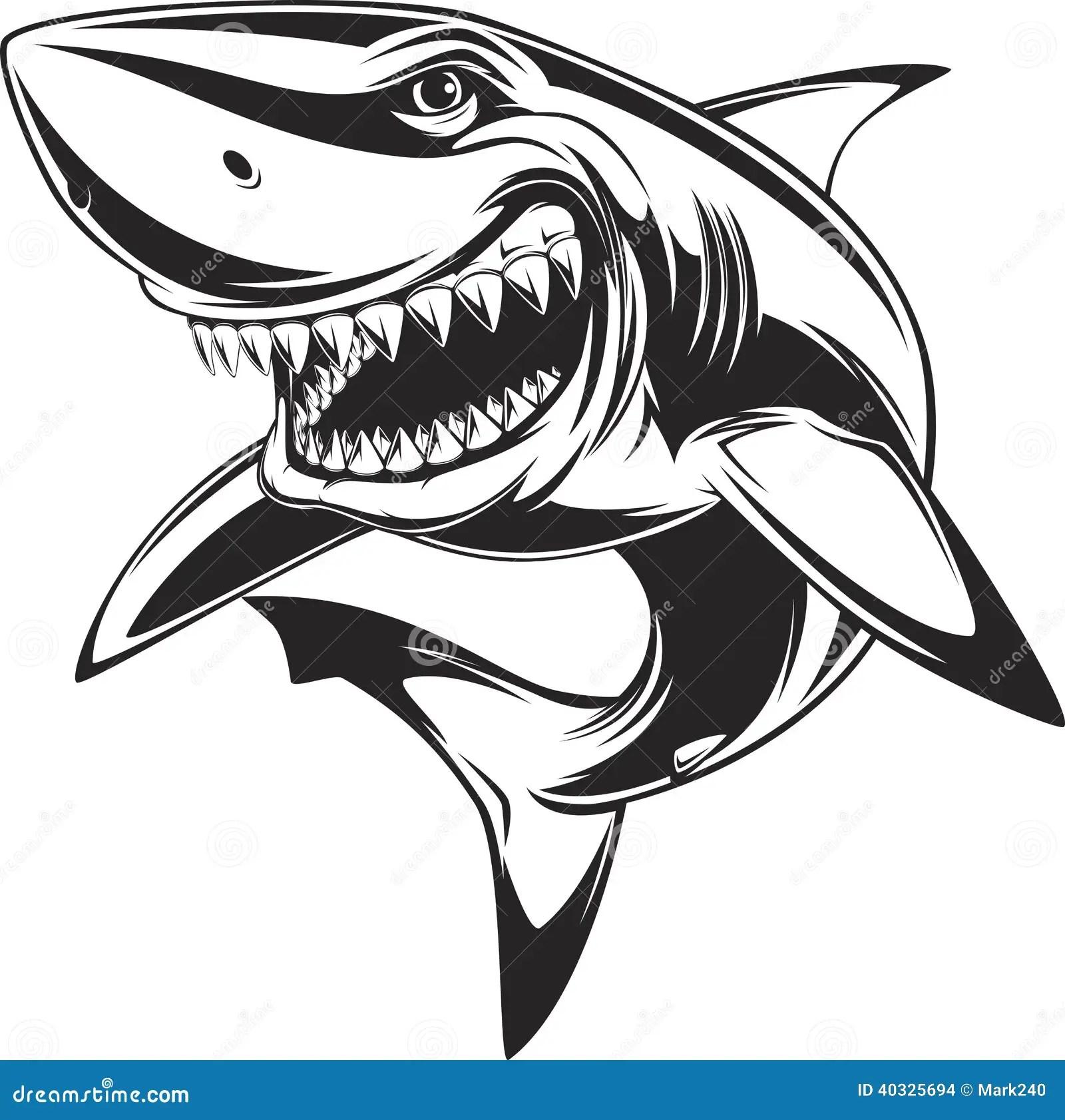 White Shark Stock Vector Illustration Of Fins Character