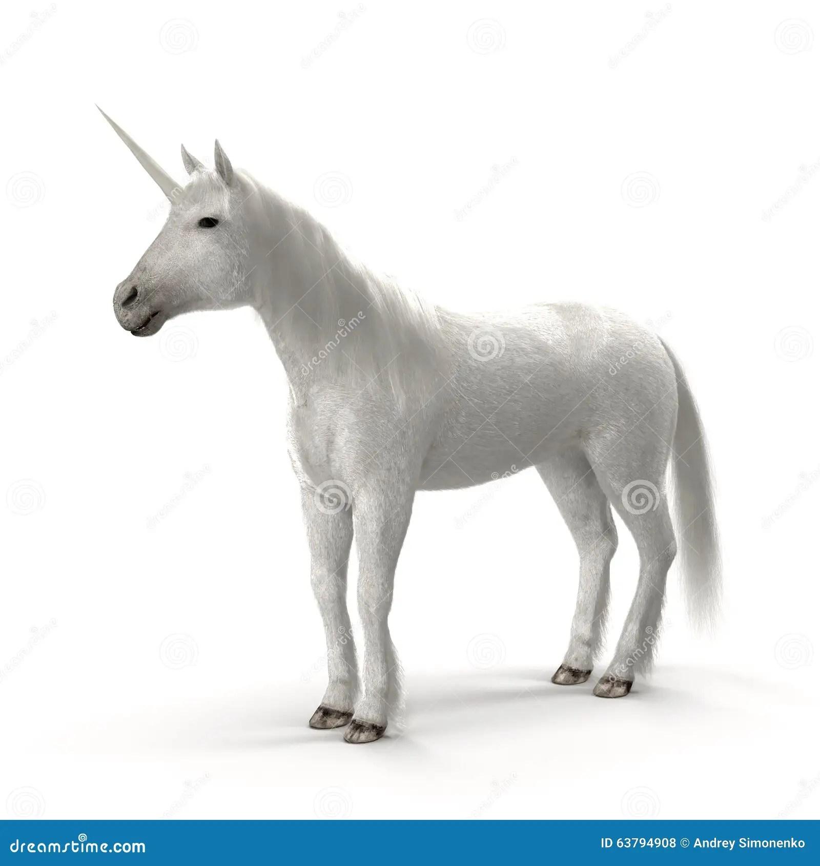 White Unicorn Stock Illustration Image 63794908