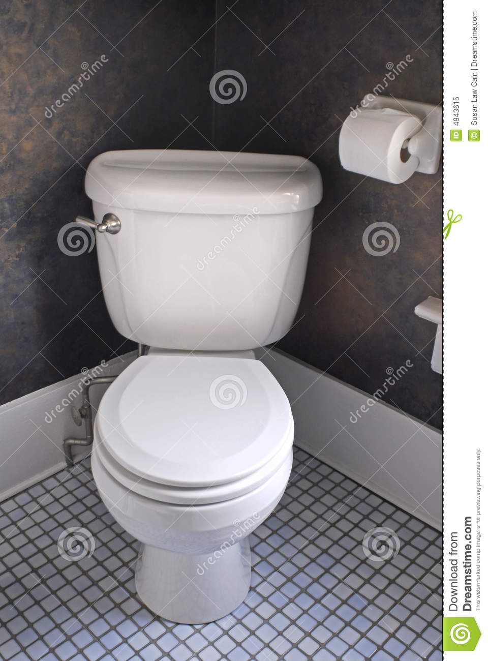 White Western Toilet Stock Image Image Of Clean Lavatory