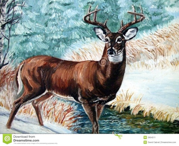 Whitetail Buck in Snow Painting