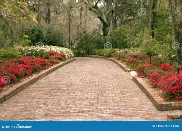 Wide Garden Walkway Royalty Free Stock - 1156676