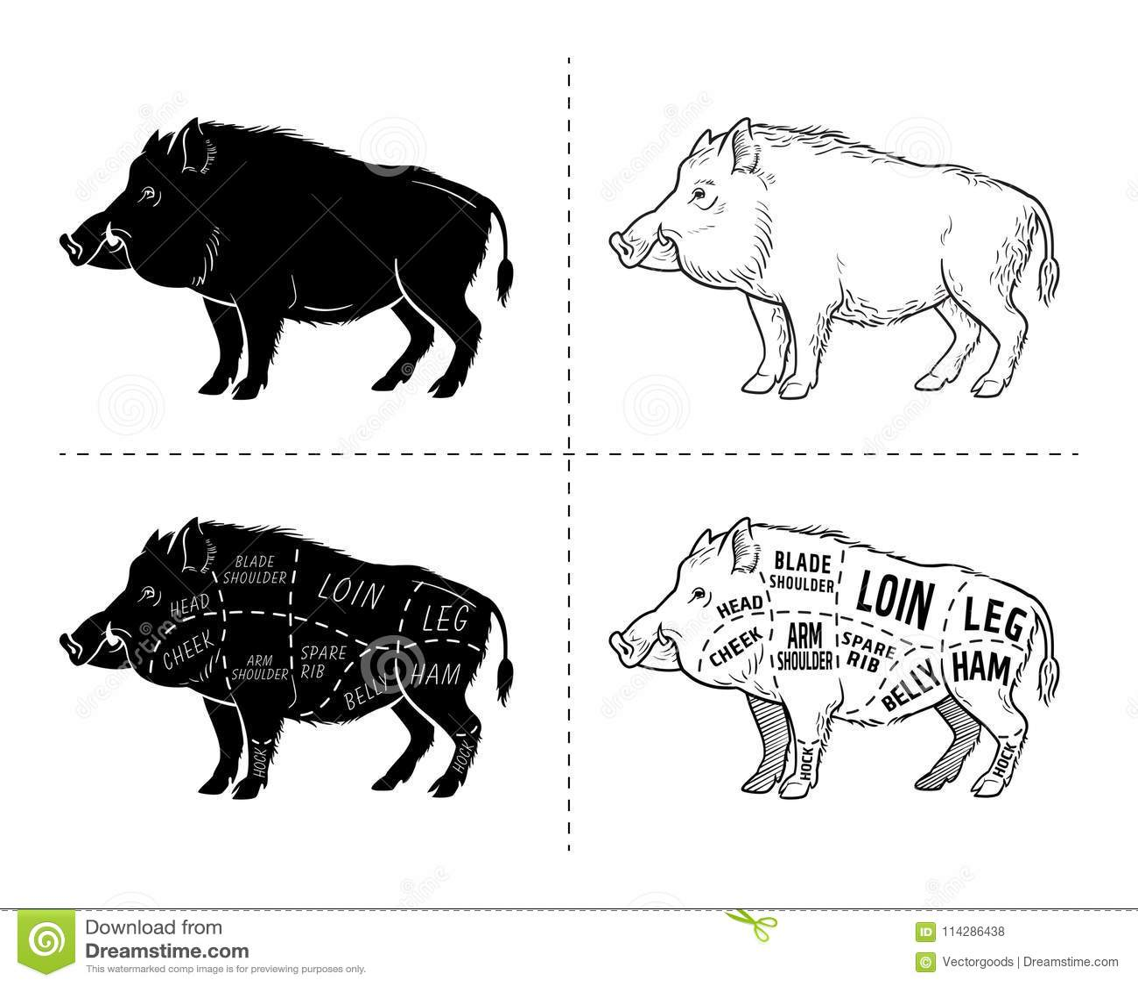 hight resolution of wild hog boar game meat cut diagram scheme elements set on wild boar meat cuts diagram logo