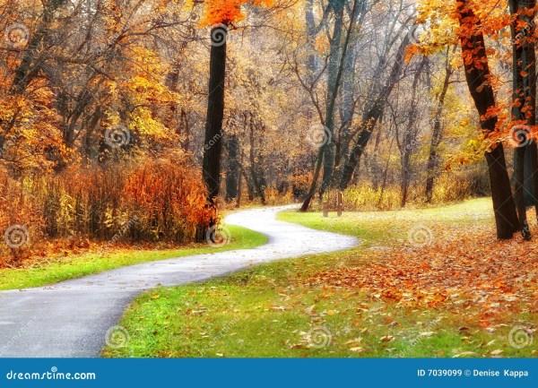 Fall Winding Path
