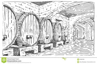vector scratchboard della illustrazione cantina illustratie hand vecchia sguardo vettore disegnato incisa barilotti annata vino stile nella mano cellar barrels