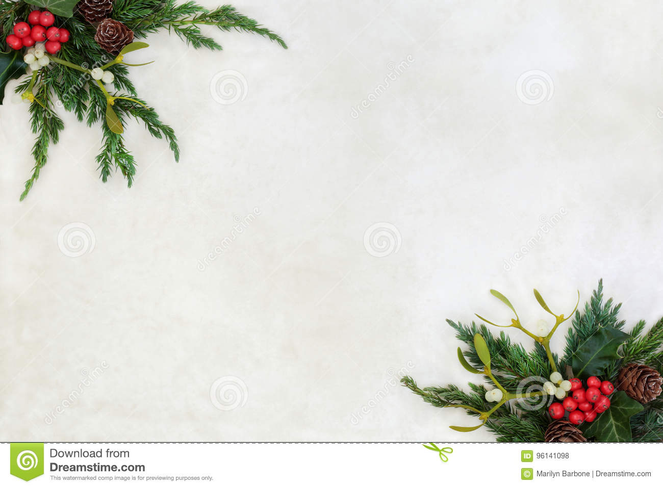 Winter Greenery Border With Fir Mistletoe And Holly Stock