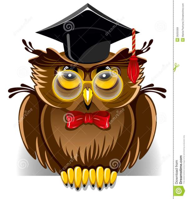 Wise Owl Royalty Free Stock - 26255358