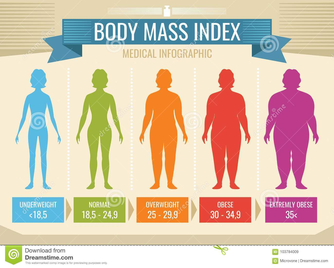 Woman Body Mass Index Vector Medical Infographic Stock
