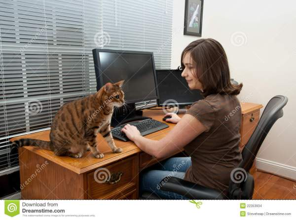 Woman And Cats Computer Desk Stock - Of