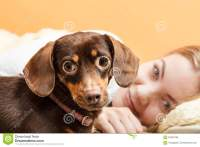 Woman With Dog Waking Up In Bed After Sleeping. Stock ...