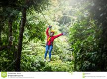 Woman Going On A Jungle Zip Line Adventure, Asian Stock ...