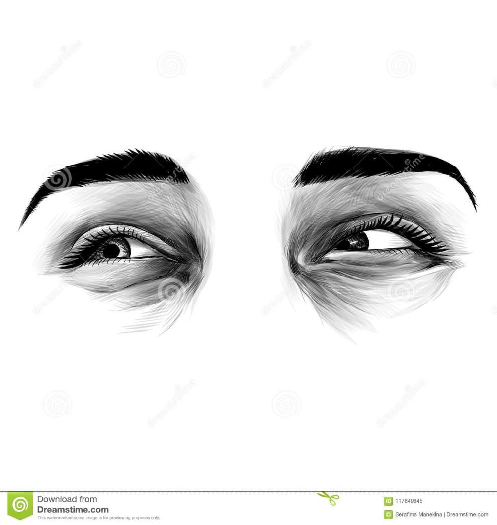 medium resolution of women s eyes sketch vector graphic