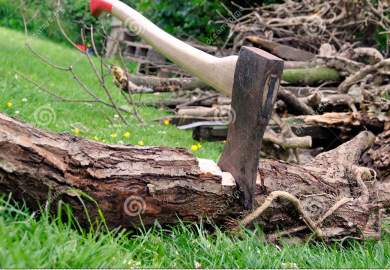 Wood Cutting Lumberjacks Axe Stuck In A Tree Log On Green Grass