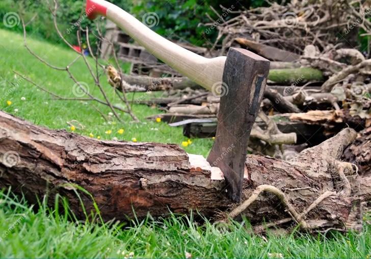Wood Cutting Lumberjacks Axe Stuck In A Tree Log On Green Grass
