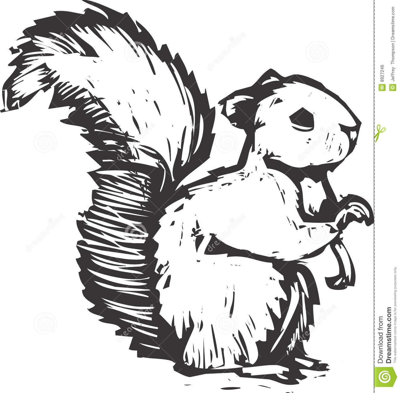Woodcut Squirrel Stock Vector Image Of Climb Forest