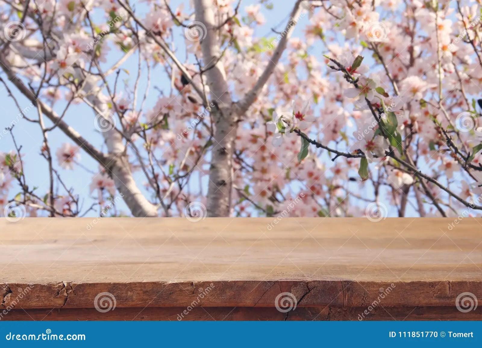 Cherry Blossom Tree Wood
