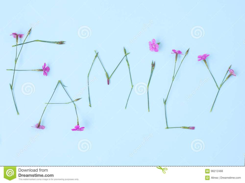 medium resolution of word family written with carnation flowers