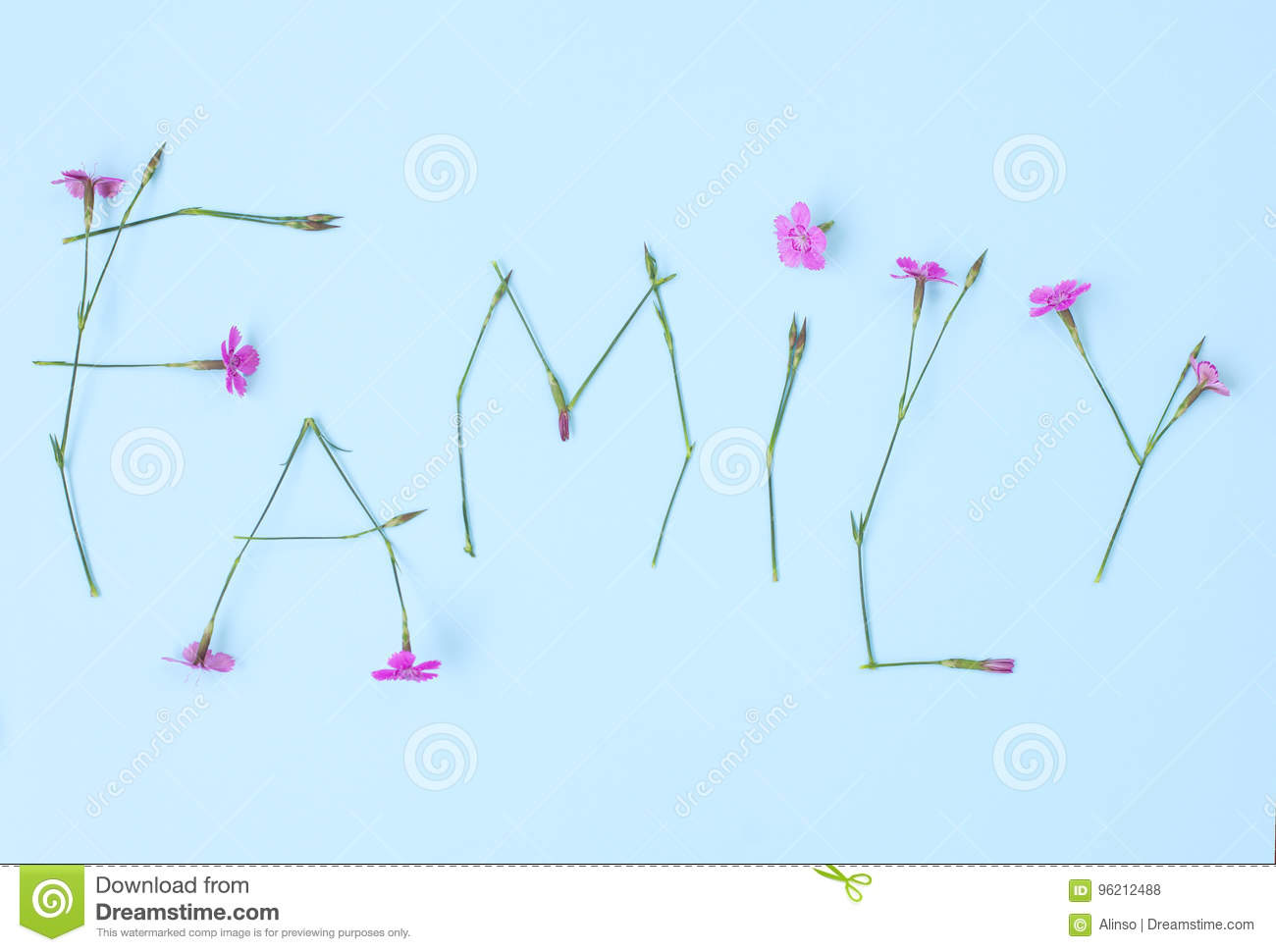 hight resolution of word family written with carnation flowers