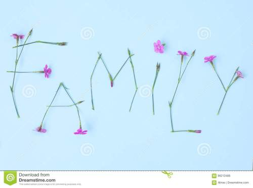 small resolution of word family written with carnation flowers