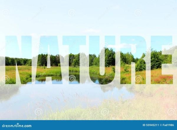 word nature stock