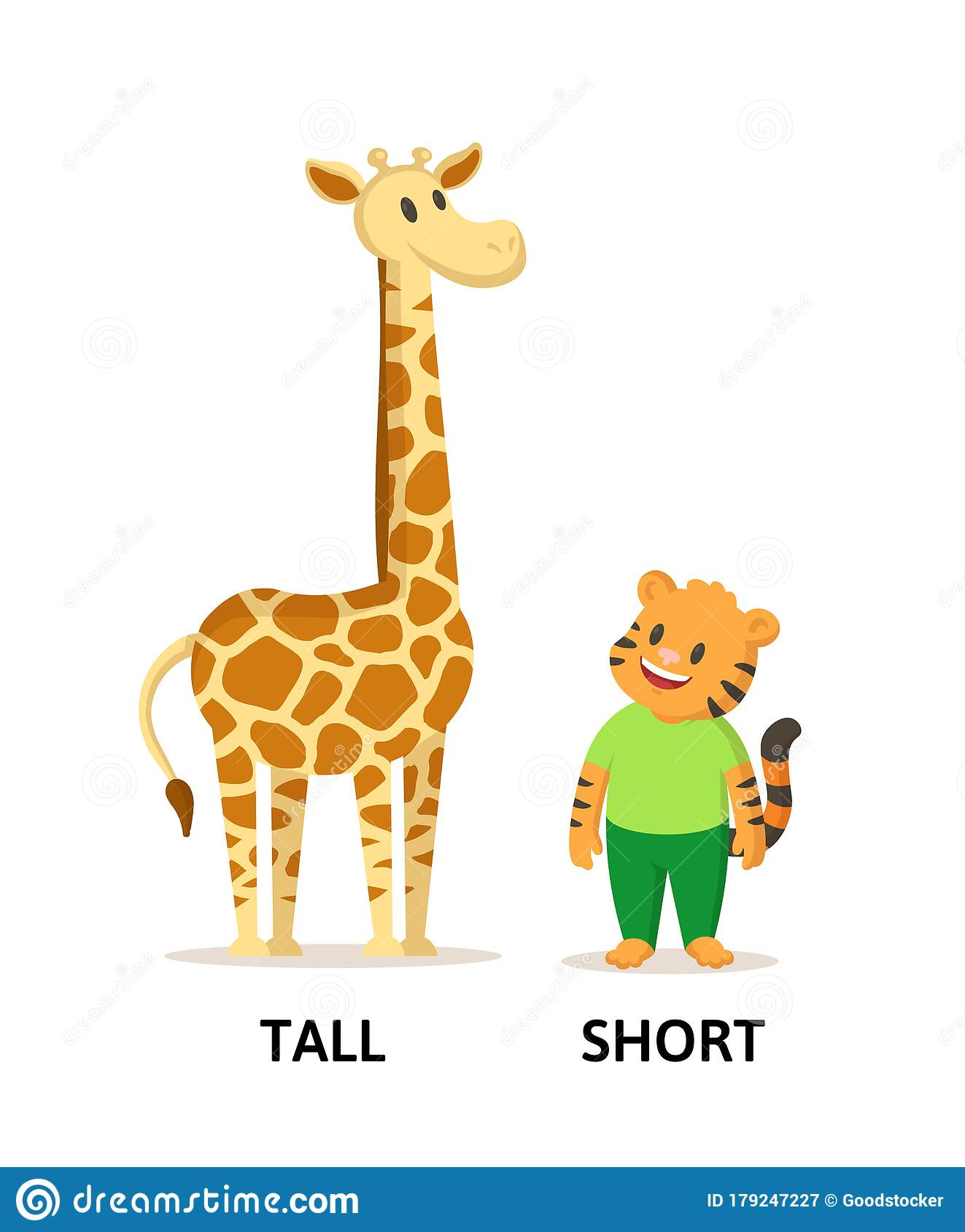 Words Tall And Short Flashcard With Cartoon Animal