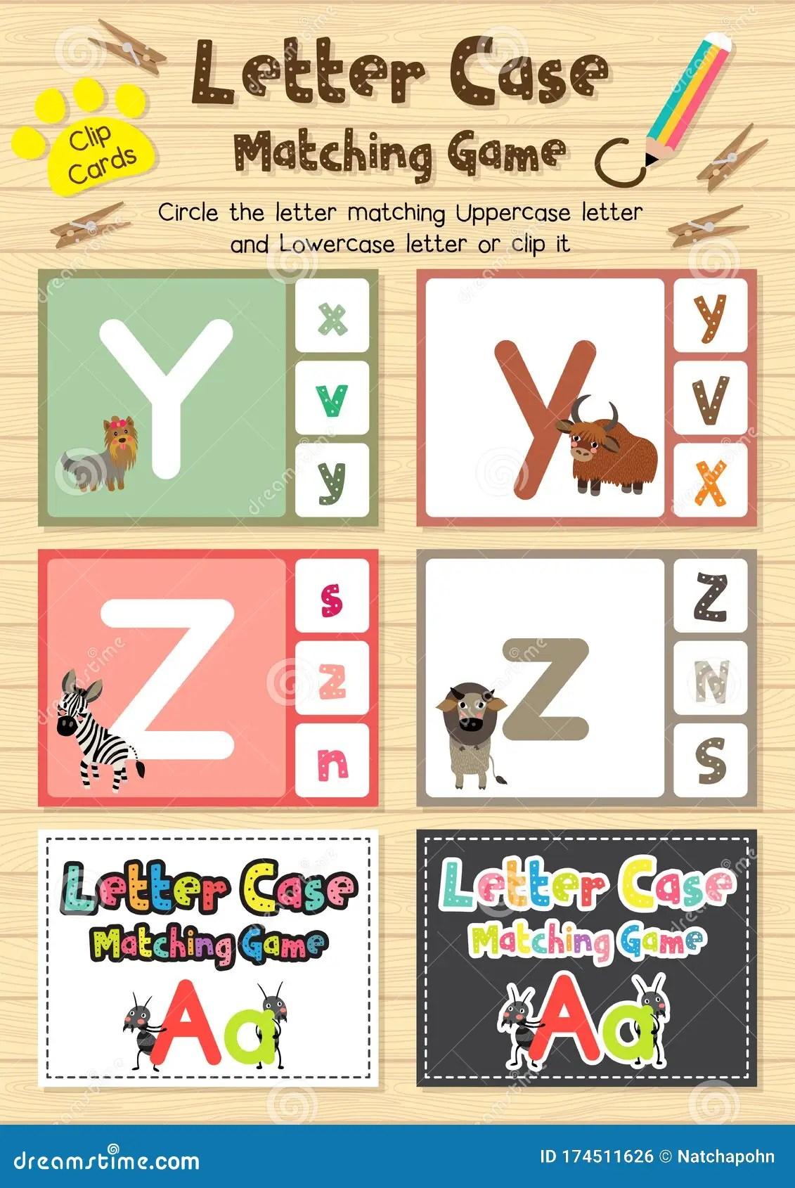 Zebu Z Letter Cute Children Animal Alphabet In Vector