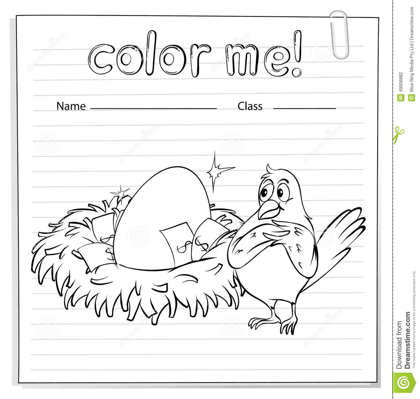 Worksheet For Birds