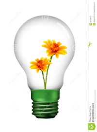Yellow Flower In Lamp Stock Photos