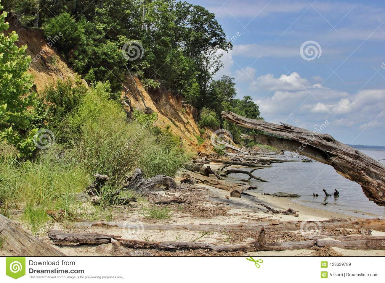 York River State Park Fossil Beach Virginia Stock Image