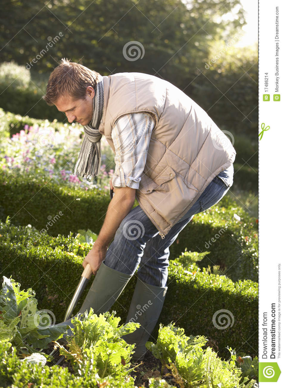 Young Man Working In Garden Stock Images  Image 17486214