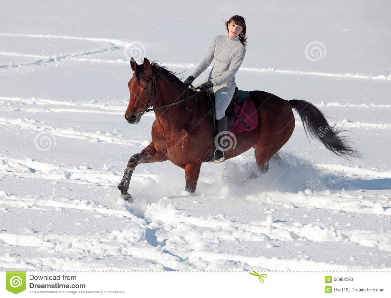 Beautiful Girl Wallpaper Hd 12 Young Woman Horseback Riding On A Snowy Glade Stock Image