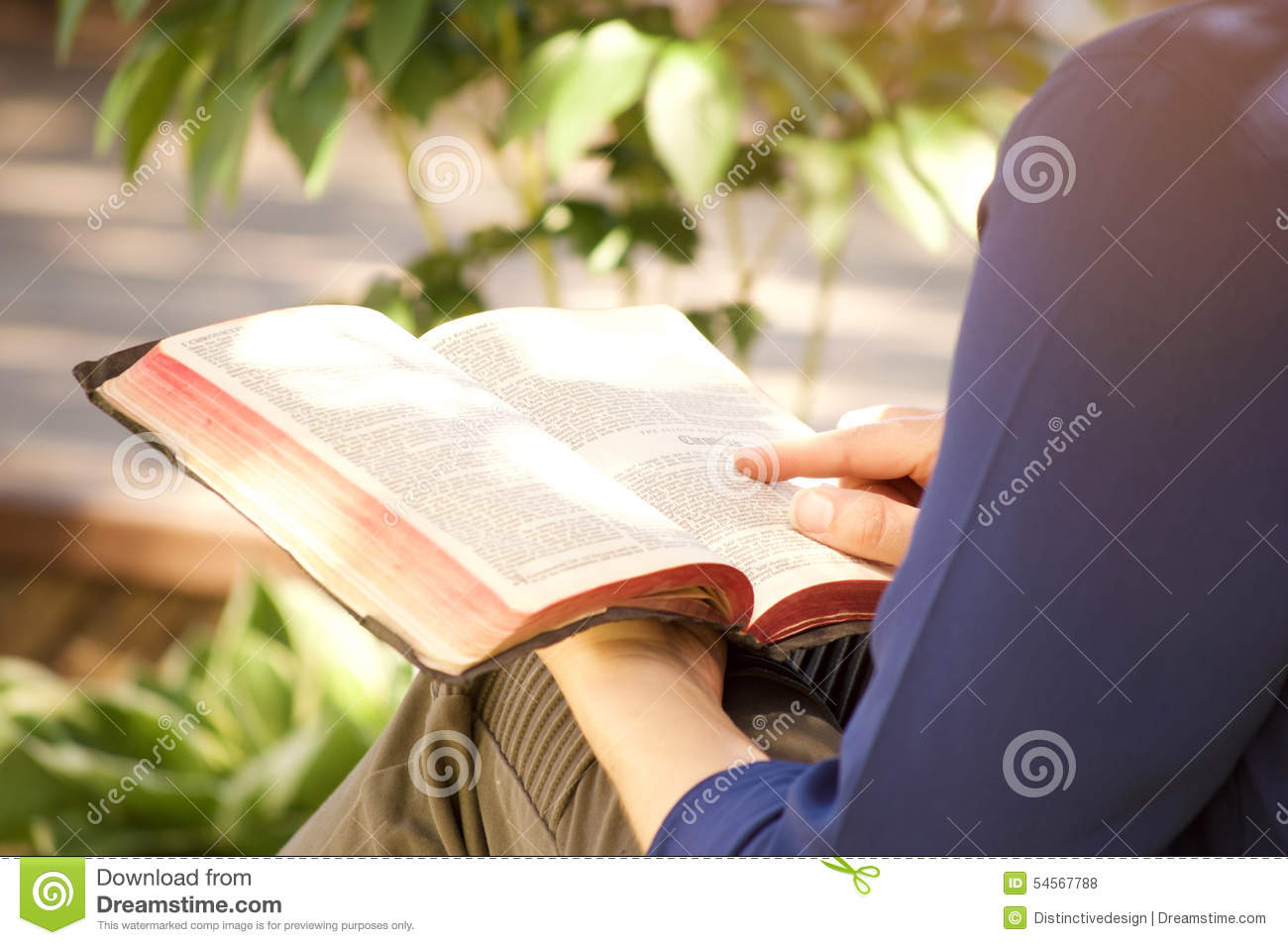 Young Woman Reading Holy Bible Outside Stock Photo