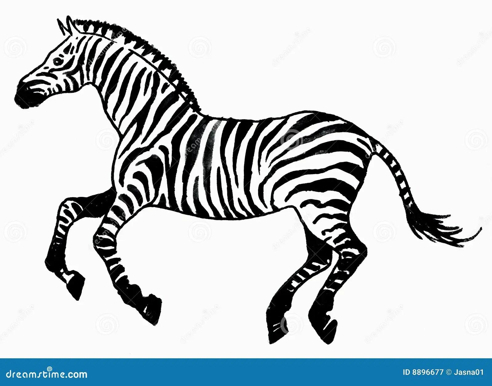 Zebra Animal Royalty Free Stock Photography