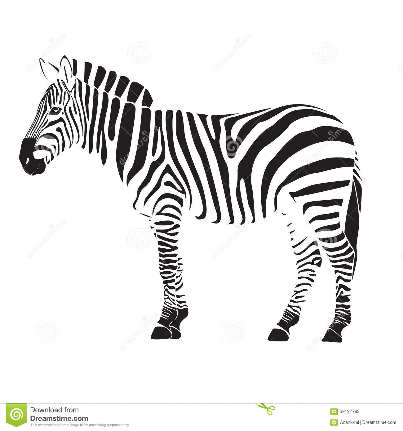 Zebra Illustration Stock Illustration Illustration Of
