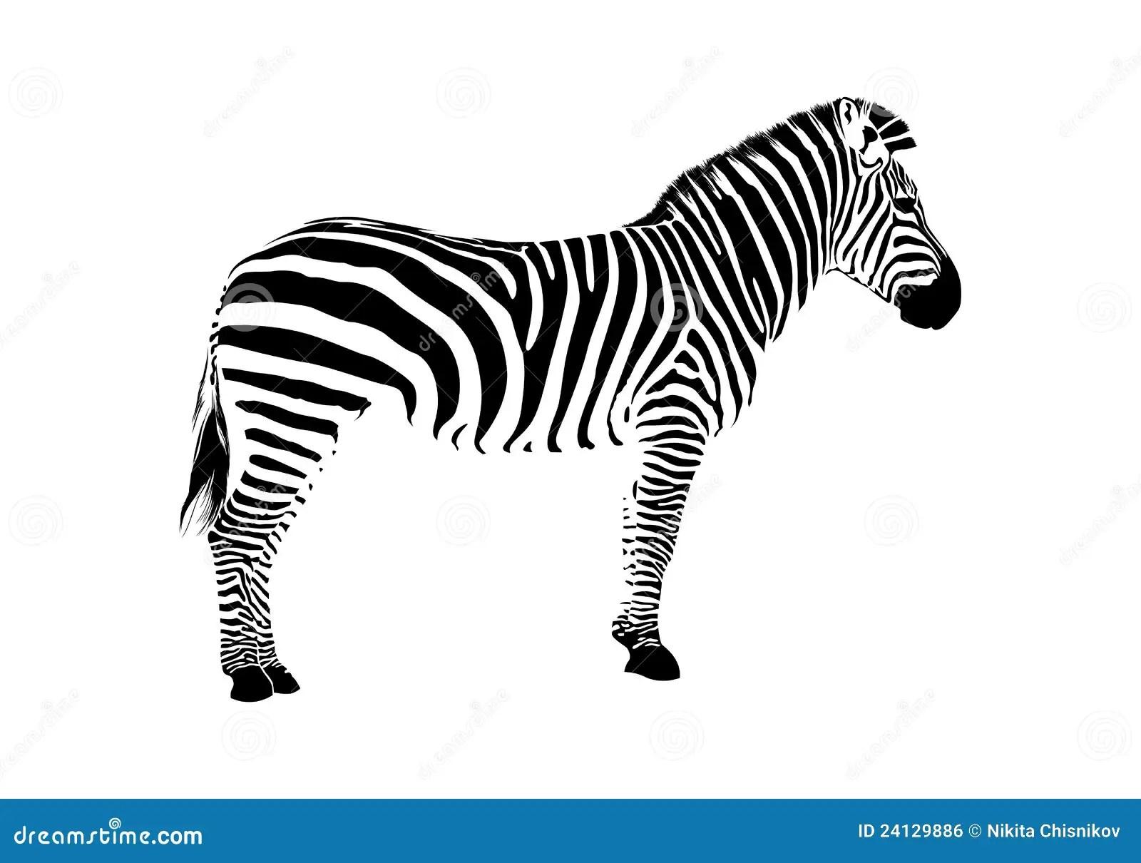 Zebra Silhouette Stock Vector Illustration Of Wildlife