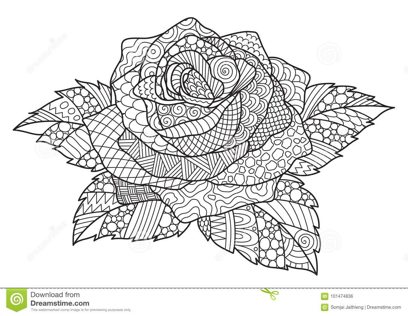 Zendoodle Design Of Rose For Design Element And Adult