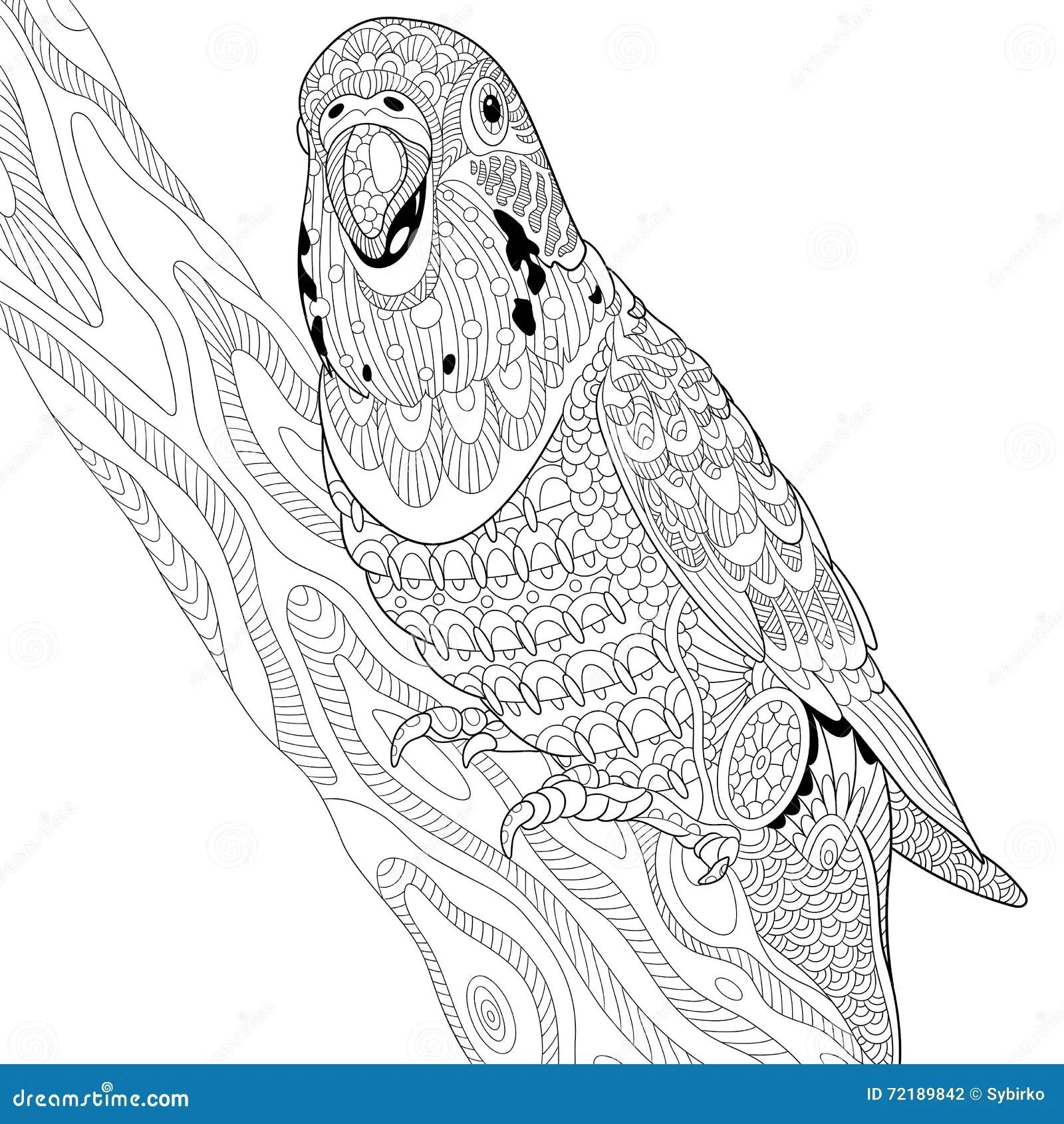 Zentangle Stylized Budgie Parrot Stock Vector