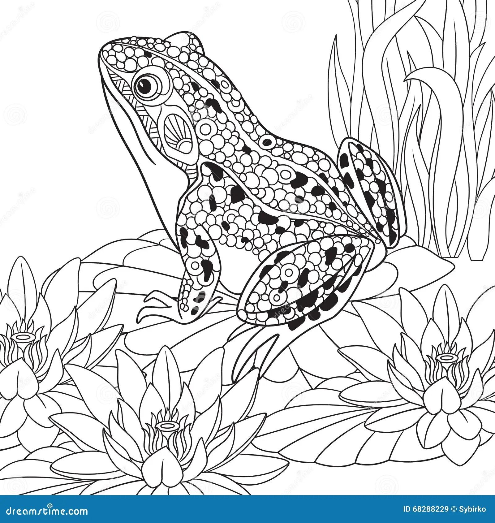 Animal Outline For Frog Sitting Vector Illustration