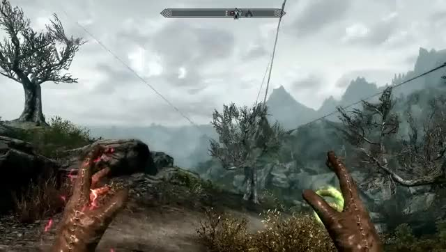 Craziest Glitch I39ve Encountered In Skyrim RIP Forsworn