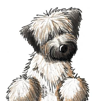 Soft Coated Wheaten Terrier By Kim Niles