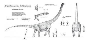 Argentinosaurus huinculensis by Nima Sassani